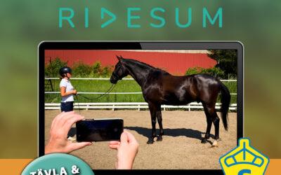 Digital exteriörbedömning via Ridesum!